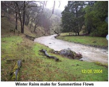 Winter rains make for summertime flows