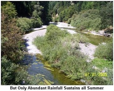 But only abundant rainfall sustains all summer